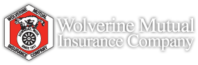 Wolverine Mutual Insurance Payments